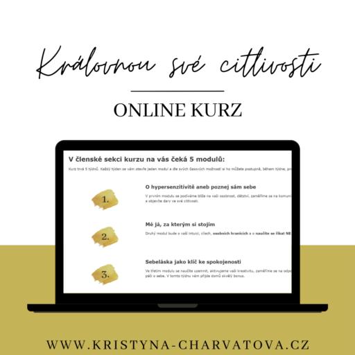 Online kurz pro vysoce citlivé